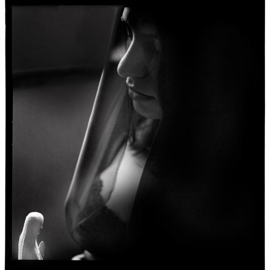 Hasselblad 500CM + 120mm Zeiss Makro Planar + Trix @ 3200 - Xtol 1+1, 15 min